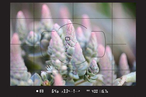 d780_electronic_range_finder--original.j