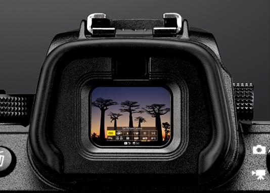 Suur OLED-paneeliga elektrooniline pildiotsija